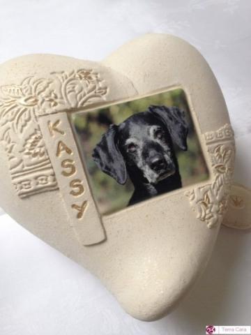 Tierurne Herz Keramik Foto Ton